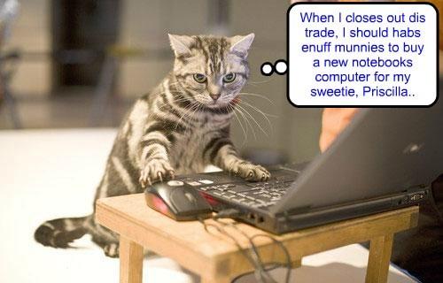 "Even tho he iz a bery successful entrepreneurs, Krafty Katt iz takin' teh ""Munnies"" Class tawt by Clive Banks.. He iz hopin' to lern eben mor wayz to makes big munnies!"