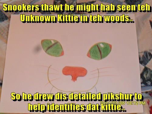 Snookers thawt he might hab seen teh Unknown Kittie in teh woods..  So he drew dis detailed pikshur to help identifies dat kittie..