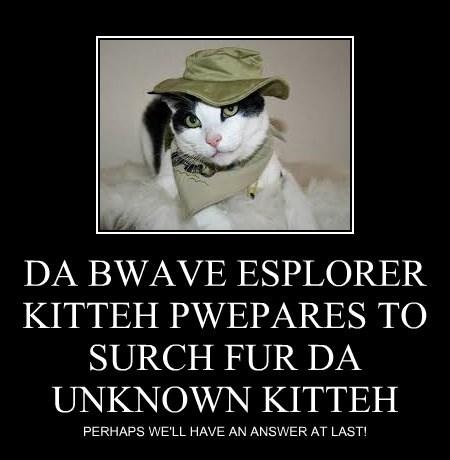 DA BWAVE ESPLORER KITTEH PWEPARES TO SURCH FUR DA UNKNOWN KITTEH