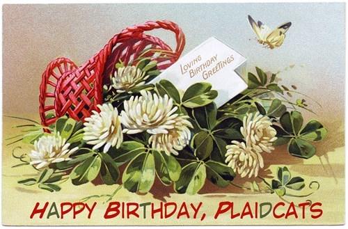 Happy Birthday, Plaidcats