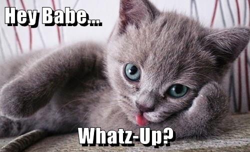 Hey Babe...  Whatz-Up?