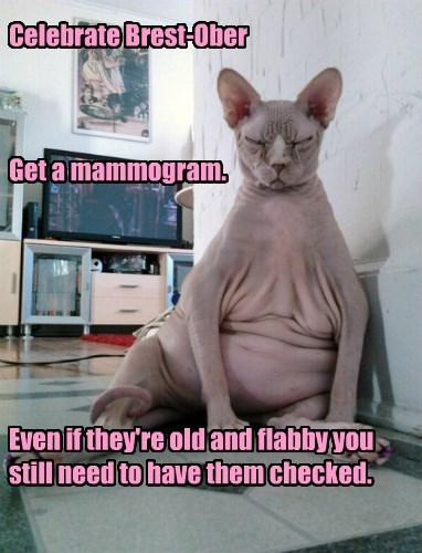 Celebrate Brest-Ober    Get a mammogram.        Even if they're old and flabby you still need to have them checked.