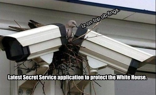 Latest Secret Service application to protect the White House.