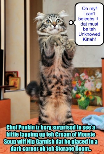 Chef Punkin habs his first siting ob teh Unknown Kitteh! But hims iz too surprised to react an' invites teh kittie to habs dinner wiff hims an' Missy..