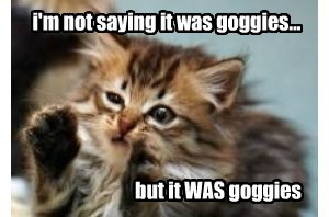 i'm not saying it was goggies...