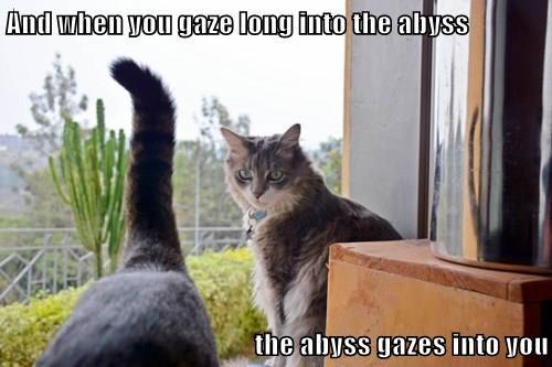 Nietzsche Cat Ponders Uncomfortable Truths