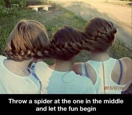 spiders,braids,hair braids