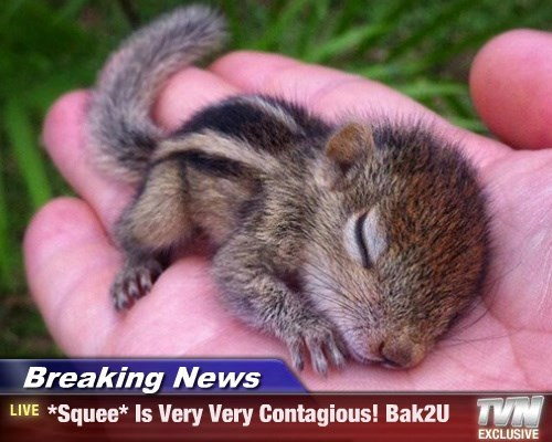 Breaking News - *Squee* Is Very Very Contagious! Bak2U