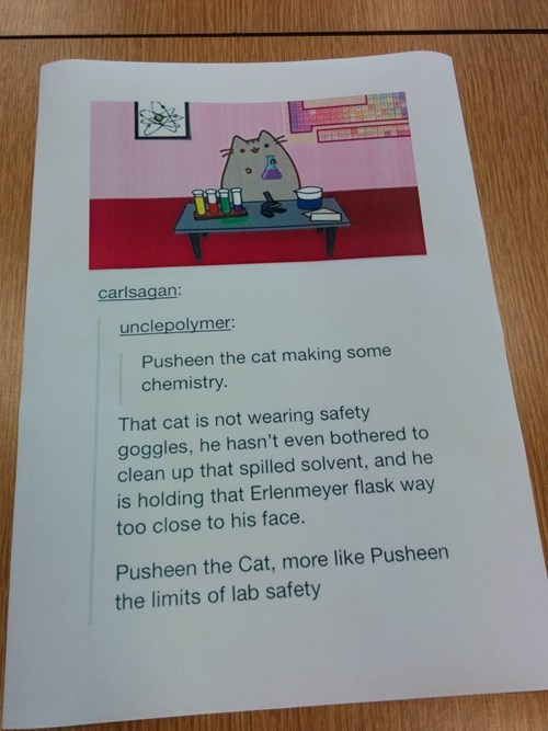 lab,monday thru friday,pusheen,safety first,g rated
