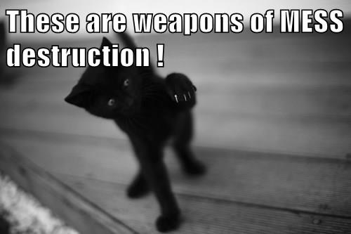 These are weapons of MESS destruction !