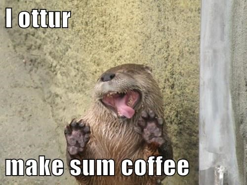 I ottur  make sum coffee