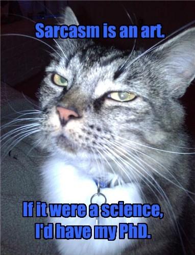 Sarcastic Cat is Sarcastic.