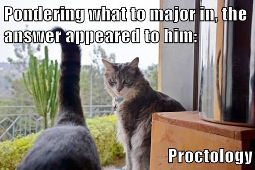 Pondering what to major in, the answer appeared to him:  Proctology