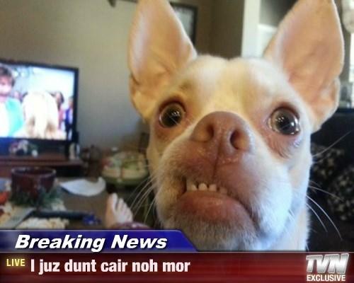 Breaking News - I juz dunt cair noh mor