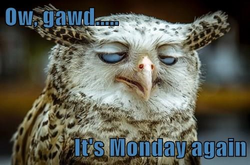 Ow, gawd.....   It's Monday again