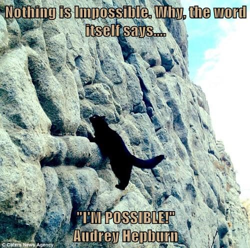 "Nothing is Impossible. Why, the word itself says....  ""I'M POSSIBLE!""                                                        Audrey Hepburn"