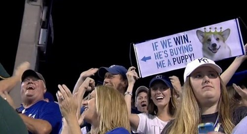 Boyfriend Makes Good on Puppy Promise, Adopts Corgi After Royals Victory
