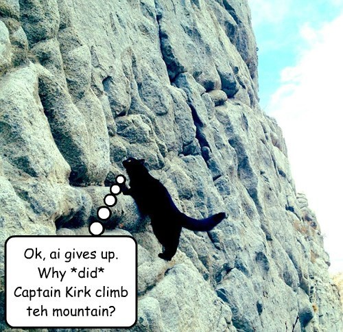 """After  watching  William  Shatner's  """"Captain  Kirk  is  Climbing  a  Mountain""""  video,  one  fan  was  inspired  to  do  further  research."""