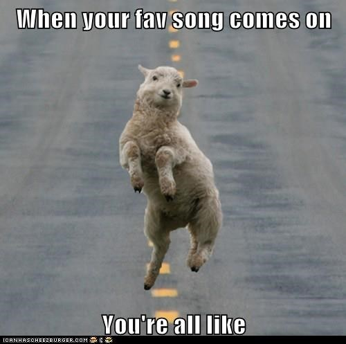 dance,lamb,Music,sheep