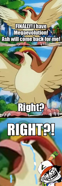 ash,Pokémon,megas,mega pidgeot