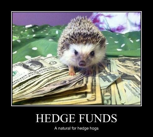 A Prickly Financial Advisor