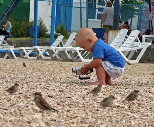 camera,birds,kids,parenting