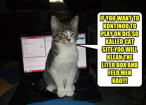 IF YOO WANT TO KONTINOO TO PLAY ON DIS SO KALLED CAT SITE YOO WILL KLEAN THE LITER BOX AND FEED MEH NAO!!!