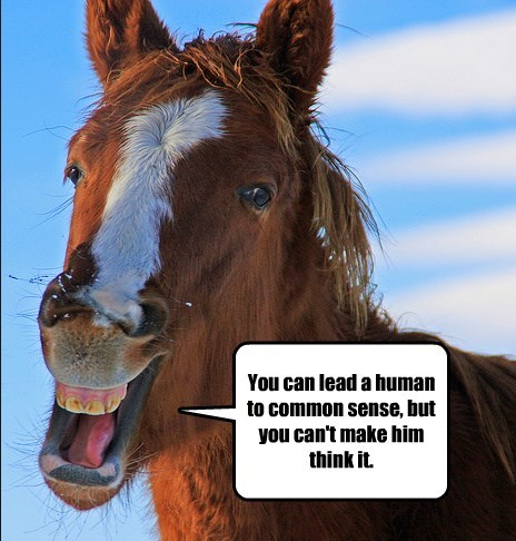 You can lead a human to common sense, but you can't make him think it.