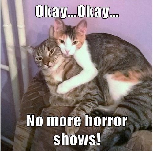 Okay...Okay...  No more horror shows!