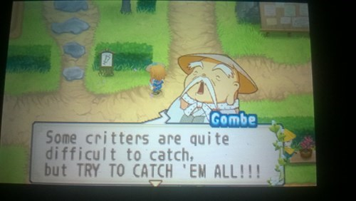 Harvest Moon Meets Pokémon