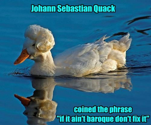 Quite Witty for a Duck
