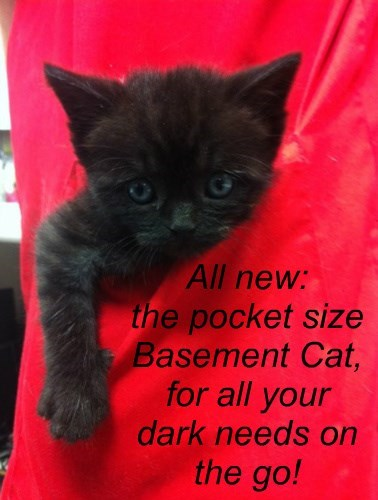 All new:  the pocket size Basement Cat,  for all your dark needs on the go!
