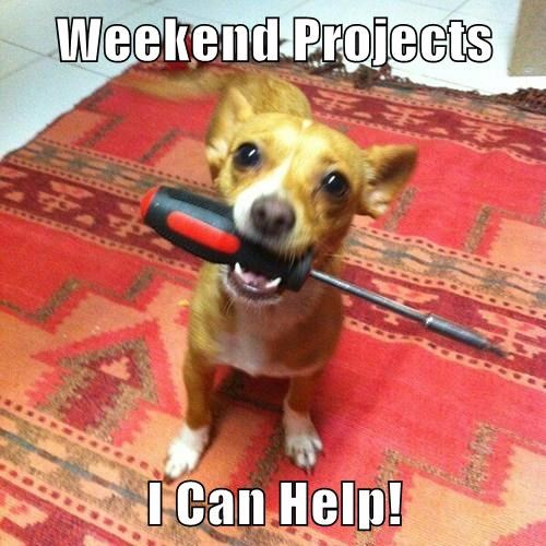 Weekend Projects  I Can Help!
