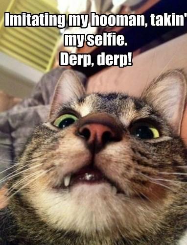 Imitating my hooman, takin' my selfie. Derp, derp!