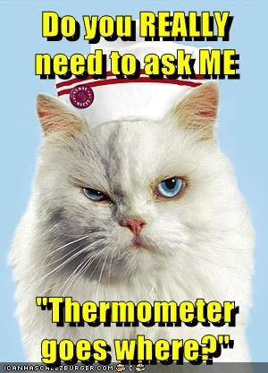 """Do you REALLY need to ask ME  """"Thermometer goes where?"""""""