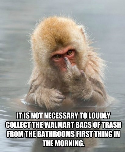 IT IS NOT NECESSARY TO LOUDLY COLLECT THE WALMART BAGS OF TRASH FROM THE BATHROOMS FIRST THING IN THE MORNING.