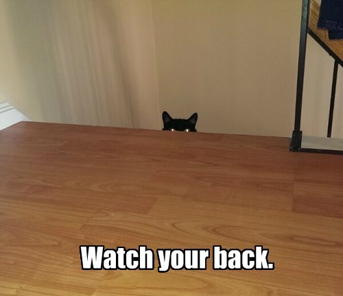 Watch your back.