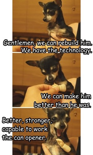 dogs,technology,chihuahua,can opener