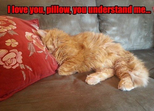 I love you, pillow, you understand me...