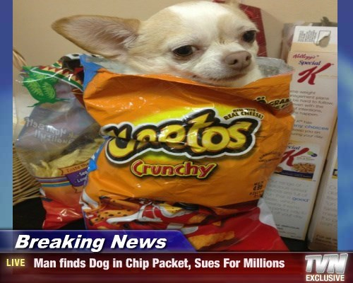 Breaking News -  Man finds Dog in Chip Packet, Sues For Millions