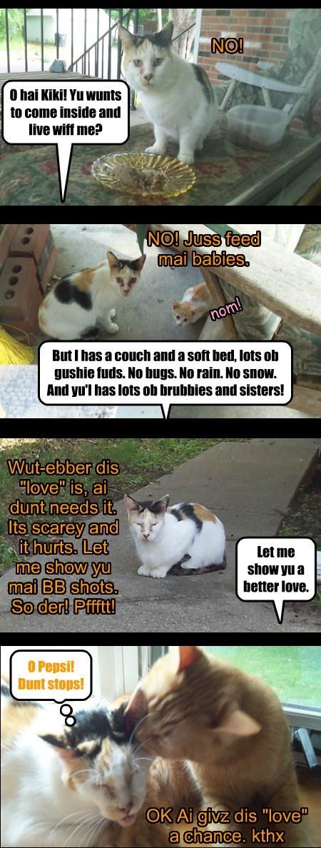 Kiki  Allcat's Kittie
