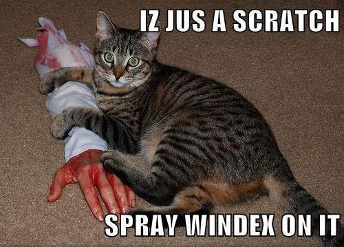 IZ JUS A SCRATCH  SPRAY WINDEX ON IT
