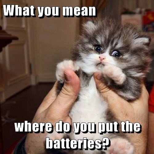 What you mean  where do you put the batteries?