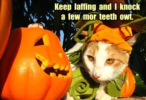 Keep  laffing  and  I  knock  a  few  mor  teeth  owt.