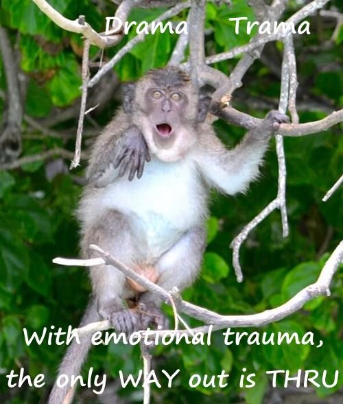 Drama    Trama  With emotional trauma, the only WAY out is THRU