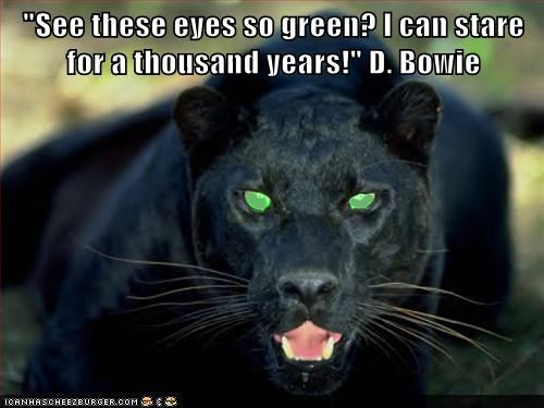 """""""See these eyes so green? I can stare for a thousand years!"""" D. Bowie"""