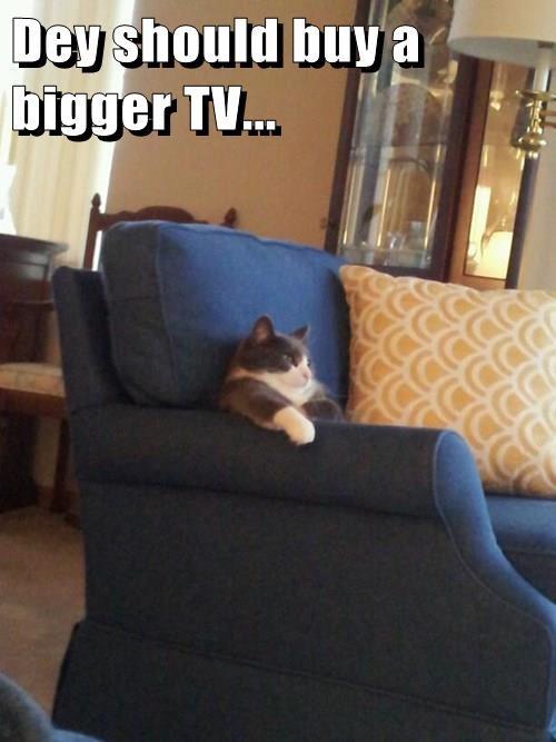 Dey should buy a bigger TV...