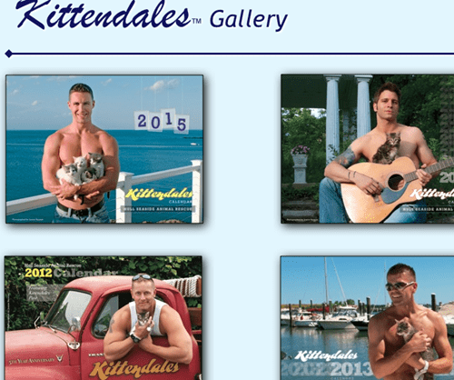New Kittendales calendar is here! http://pussingtonpost.com/charity-raise-funds-with-launch-of-the-kittendales-calendar-2015/
