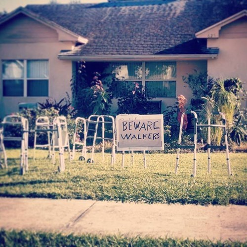 The Perfect Halloween Decorations