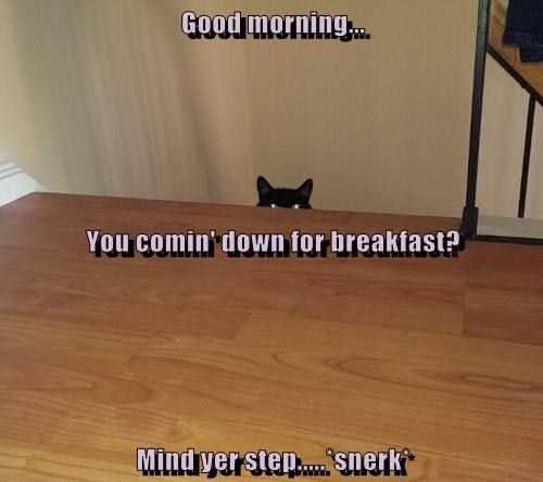 Good morning...   You comin' down for breakfast? Mind yer step.....*snerk*
